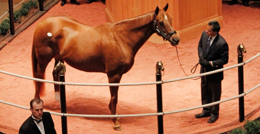 Rhumb Line: Kentucky Winter Mixed Sale Success Story