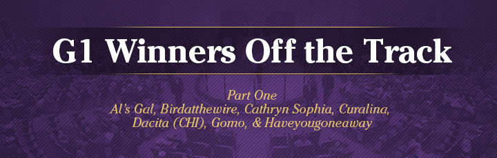 The November Sale: Grade 1 Winners Off the Track (Part1)