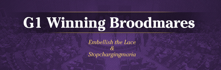 The November Sale: G1 Winning Broodmares