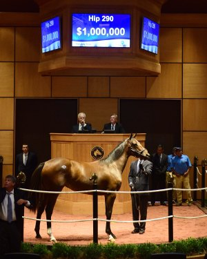 Hip 290, 2017 Fasig-Tipton July Sale