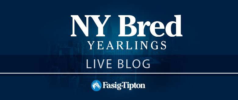 Live Blog: The New York Bred Sale, Session 2 (2017)