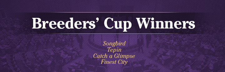 The November Sale: Breeders' CupWinners