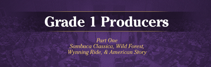 The November Sale: Grade 1 Producers, Part 1