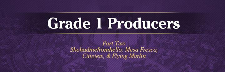 The November Sale: Grade 1 Producers, Part2