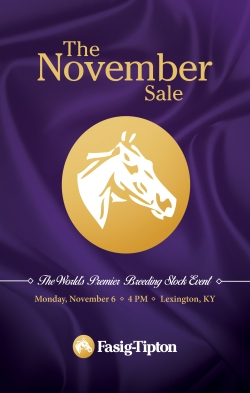 NovemberSale_cover_FINAL
