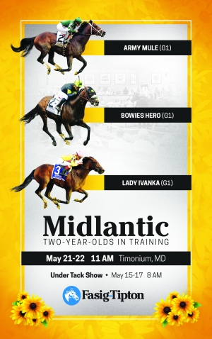 Midlantic2YO_catalogue_front_FINAL