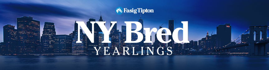 New York Bred Yearlings (2018): Session 2 Live Blog