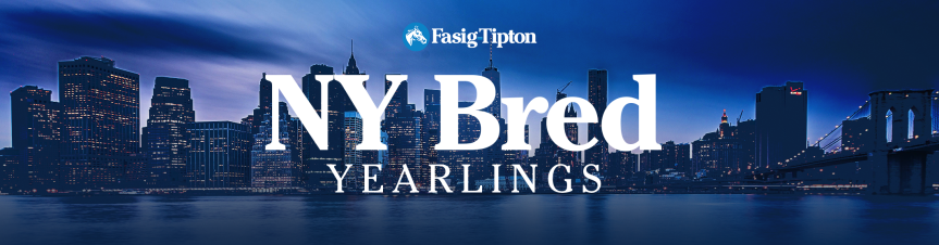 New York Bred Yearlings (2018): Session 2 LiveBlog